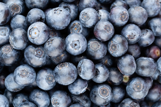 Fresh blueberries background texture
