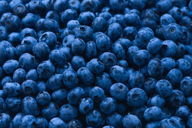 신선한 블루베리 배경입니다. 텍스처 블루베리 열매를 닫습니다.