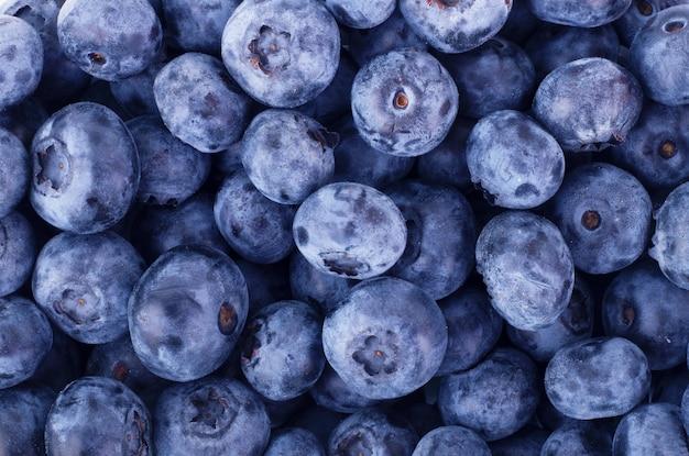신선한 블루베리 배경입니다. 질감 블루베리 열매를 닫습니다.
