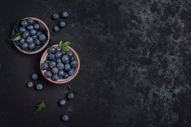 Fresh bowls of blueberries copy space