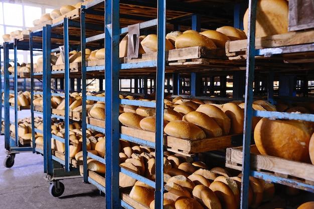Fresh bread on a shelf in a bakery