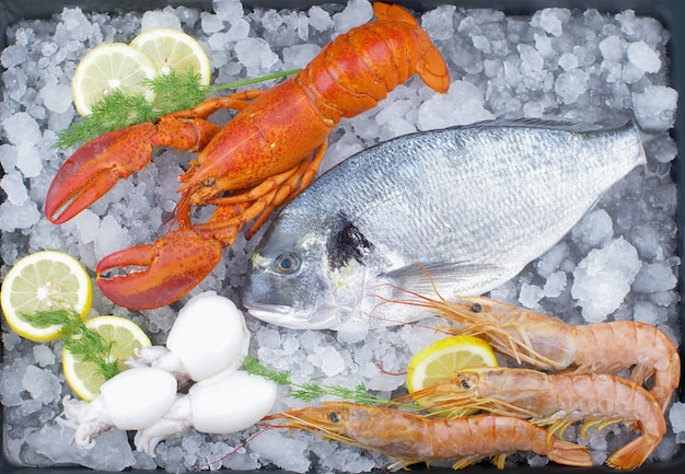 Fresh bream, lobster, shrimps and cuttlefish on ice with lemon slice