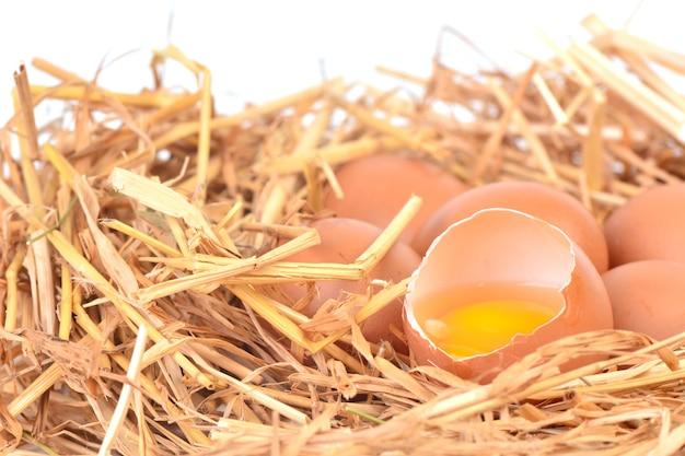 Свежие разбитые яйца на соломке