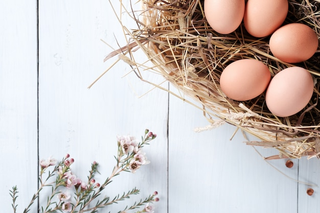 Fresh brown eggs in basket and branch of flowers on pastel blue wooden background