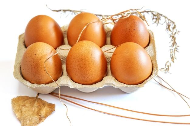 白い背景の上のコンテナで新鮮な茶色の卵。