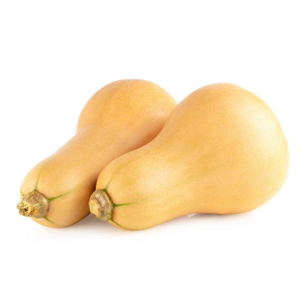 Fresh butternut isolated over a white background