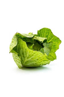 Fresh cabbage vegetable isolated on a white background