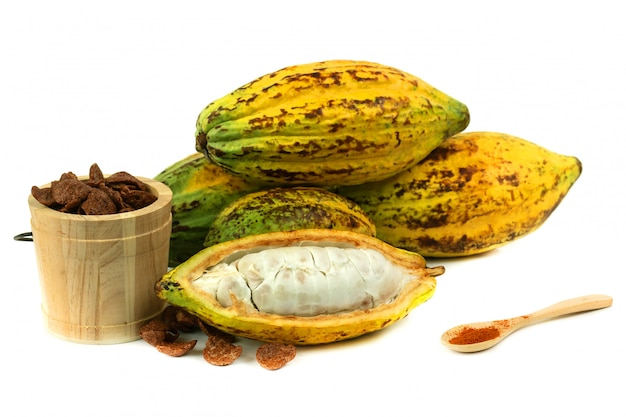 Fresh cacao fruit with cocoa crunch (products production from cacao)