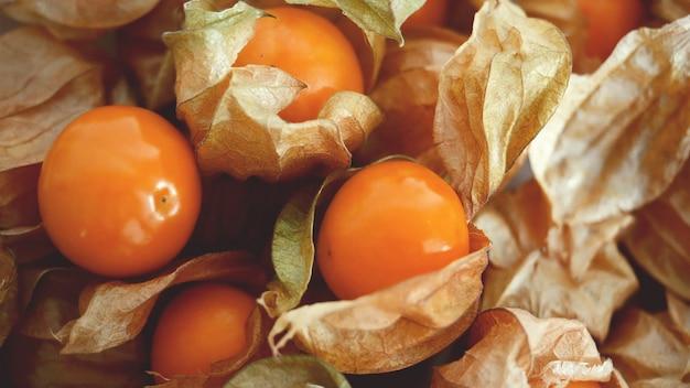 ケープグーズベリーのフレッシュフルーツ