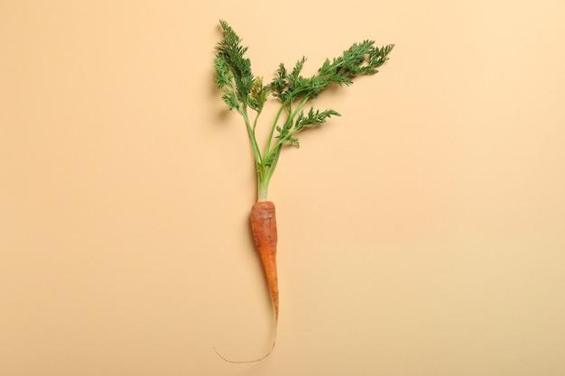 Свежая морковь на бежевом фоне, место для текста