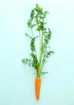 Fresh carrot on pastel blue background, top view, copy space, healthy food.