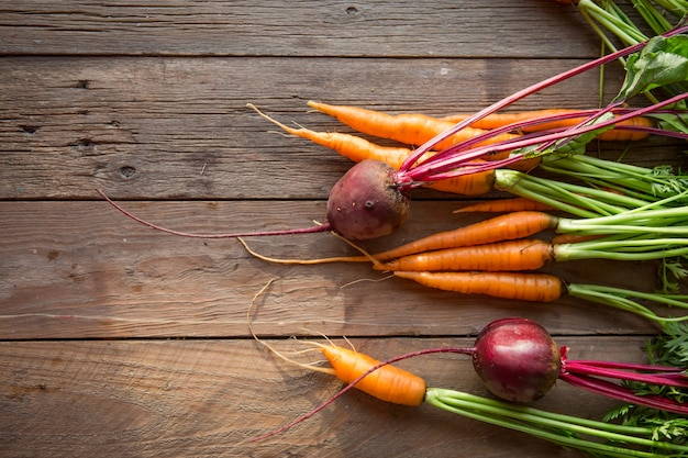 Fresh carrots, beetroot heap with green stems
