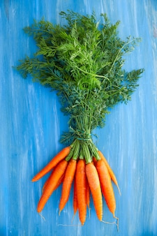 Fresh carrots bunch with stems and leaves