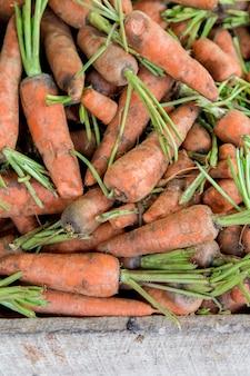 Fresh carrots on the market