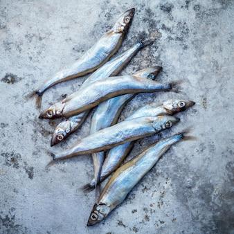新鮮なキャッチshishamoの魚は完全に卵白の薄い金属の背景に平らに置く。