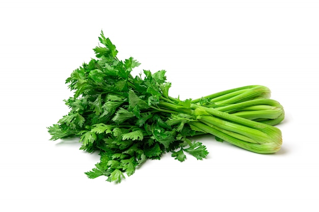 Fresh celery isolated on white background.