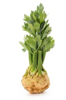 Свежий корень сельдерея с листом на белом фоне