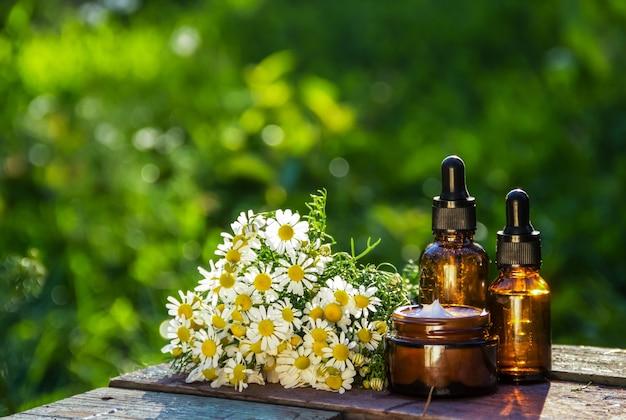 신선한 카모마일 꽃 크림과 에센셜 오일