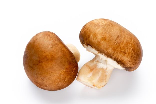 Свежие грибы шампиньоны, изолированные на белом.