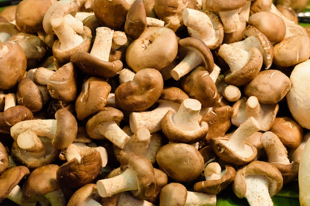 Fresh champignon mushrooms. the nature mushroom raw material for clean and lean food.