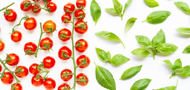 Fresh  cherry tomatoes with basil leaves on white background.