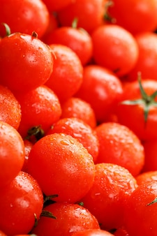 Fresh cherry tomatoes with closeup.