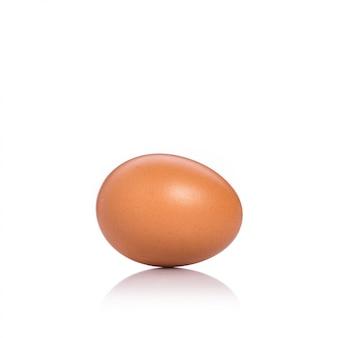 Fresh chicken egg shot in studio. isolated on white