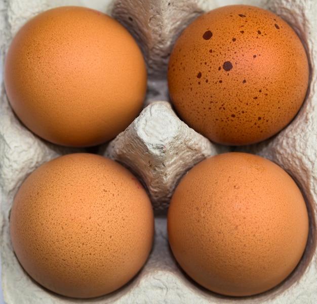 클로즈업에서 골 판지 트레이에 신선한 닭고기 달걀