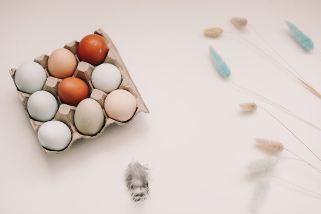 白地に自然な色合いと色の新鮮な鶏卵