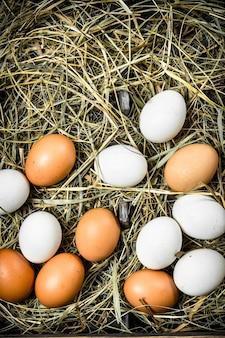 古いトレイに新鮮な鶏の卵