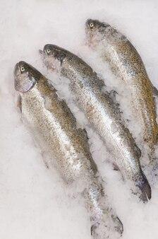 Свежий охлажденный лосось на льду. вертикальная рамка