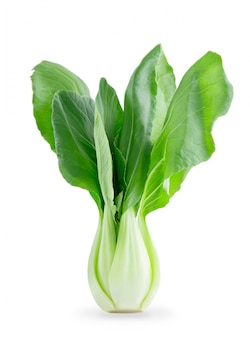 Fresh chinese bok choy vegetable isolated on white
