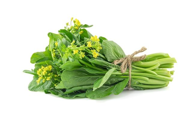 新鮮な白菜や白菜を白で隔離