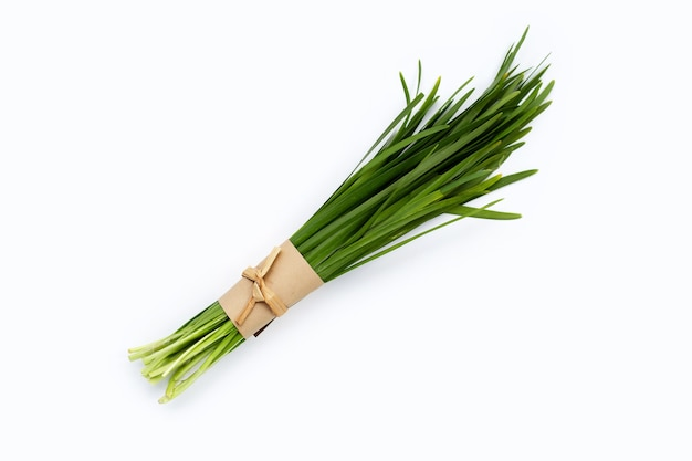 Fresh chinese chive leaves on white.