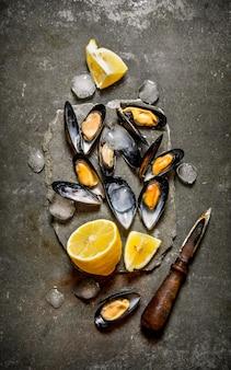 레몬과 얼음을 얹은 신선한 조개.