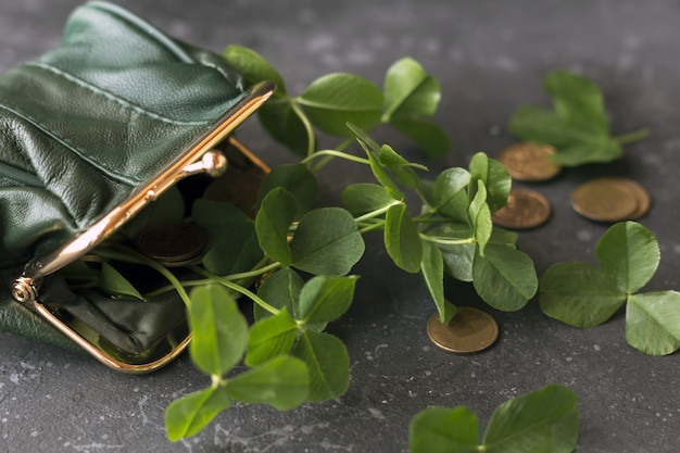 Fresh clover leaves from a green purse and gold coins are scattered on a dark background. st. patrick's day concept.