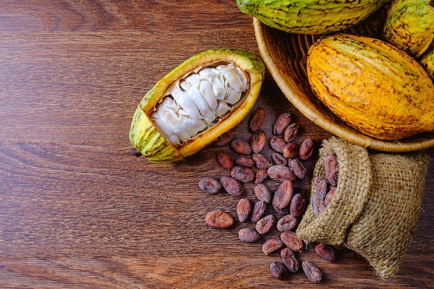 Fresh cocoa fruit with cocoa pods with cocoa beans