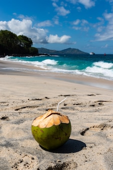Fresh coconut cocktail the beautiful beach at sunny day