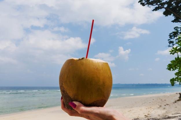 청록색 바다 배경, 여행 카드, 구부러진 수평선이 있는 손에 신선한 코코넛 칵테일. 해변에서 코코넛 밀크를 마신다. 동남아시아. 갈증을 잘 풀어주는 건강 과일 음료