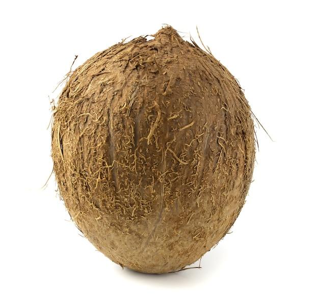 흰색 배경에 고립 된 신선한 코코넛 프리미엄 사진