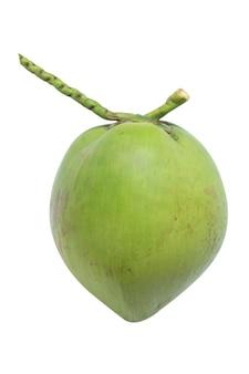 흰색 배경에 고립 된 신선한 코코넛