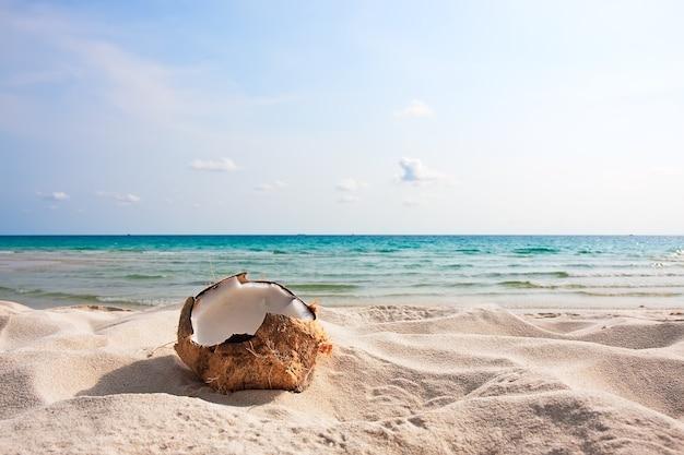 푸른 하늘을 배경으로 모래 해변에 있는 신선한 코코넛