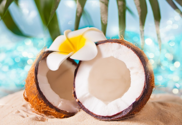 Fresh coconut on the sea sand. plumeria frangipani for decoration. sea or ocean, palm leaf on the background.