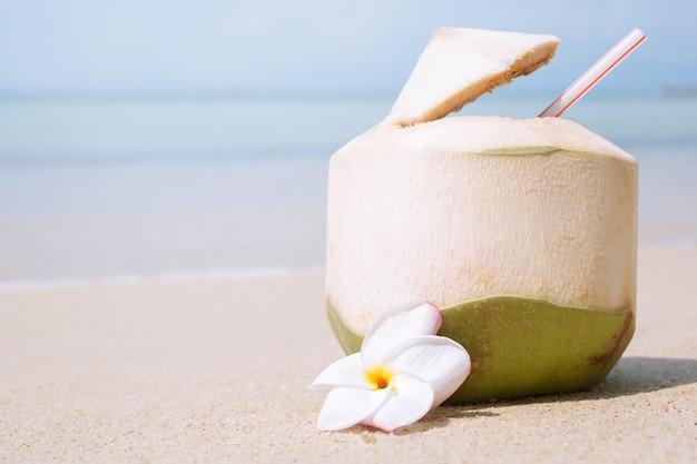海の砂浜でストローと新鮮なココナッツ。熱帯の休暇旅行の概念