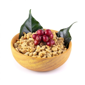 Fresh coffee red berry branch and coffee beans  in a wooden bowl