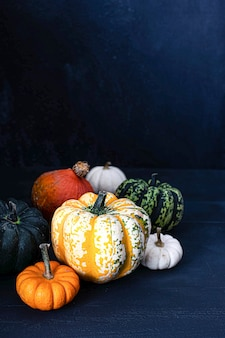 Fresh colorful pumpkins on a table