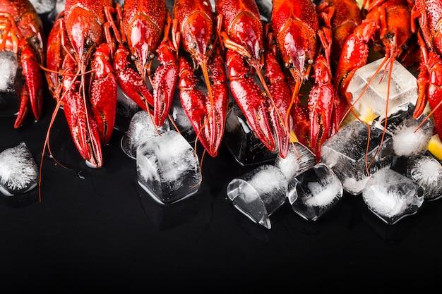 Свежие вареные раки в кубиках льда