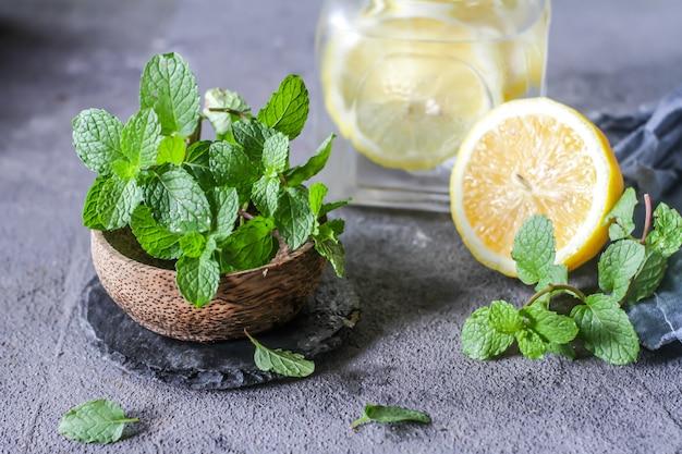 Fresh cool lemon mint water