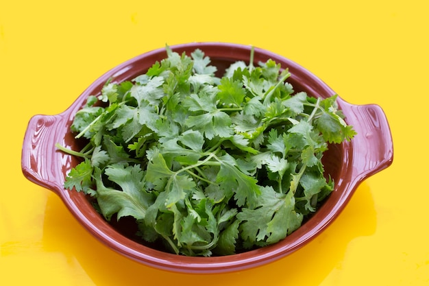 Fresh coriander leaves in bowl on yellow background.