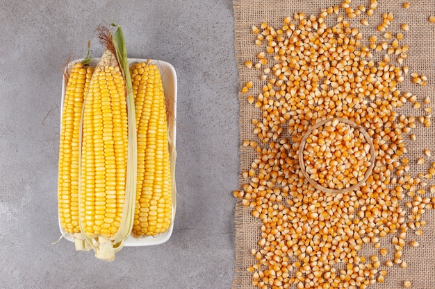 Fresh corn ears with uncooked corn beans on a sackcloth